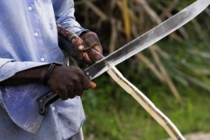 man using a machete to cut wood