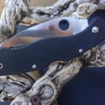 spyderco best self defense knife