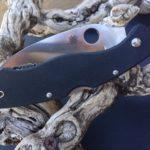 spyderco best self defense knife