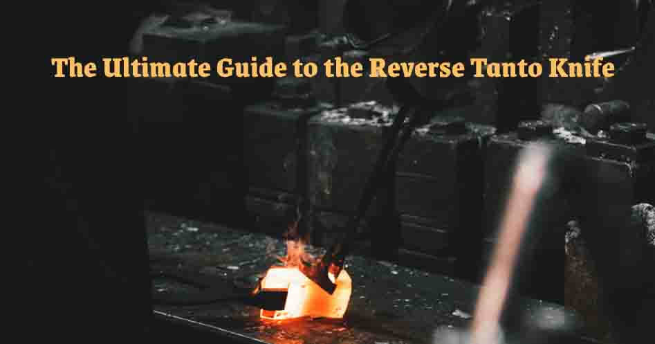 Guide to the Reverse Tanto Knife